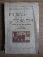 Anticariat: V. Gorski - Pribeag in tara mea (1925)
