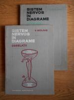 V. Miclaus - Sistem nervos in diagrame. Corelatii (2 volume)