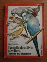 Vadim Nesterov - Pasarile de colivie si voliera. Ingrijire, boli, tratamente