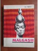 Val Tebeica - Malgasii