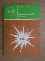 Valeriu Rugina - Microorganisme si energia