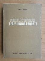 Anticariat: Vasile Baloiu - Ameliorarea terenurilor erodate
