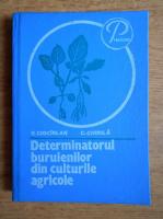 Vasile Ciocarlan - Determinatorul buruienilor din culturile agricole