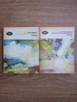 Anticariat: Vasile Voiculescu - Poezii (2 volume)