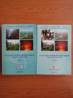 Anticariat: Vatra Fanica, Postolache Petru - Calitatea energiei electrice. Manual pentru profesionisti (volumele 1 si 2)