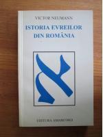 Victor Neumann - Istoria evreilor din Romania
