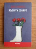 Anticariat: Viorel Domenico - Revolutia de ghips