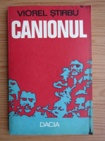 Viorel Stirbu - Canionul
