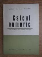 Virgil Brisca - Calcul numeric pentru anul III liceu, clase speciale matematica