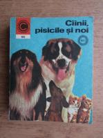 Anticariat: Virgil Popa - Cainii, pisicile si noi