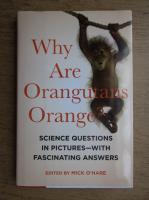 Anticariat: Why are orangutans orange?