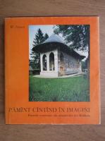 Wilhelm Nyssen - Pamant cantand in imagini. Frescele exterioare ale manastirilor din Moldova