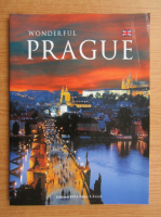 Anticariat: Wonderful Prague