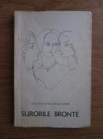 Anticariat: Zoe Dumitrescu Busulenga - Surorile Bronte
